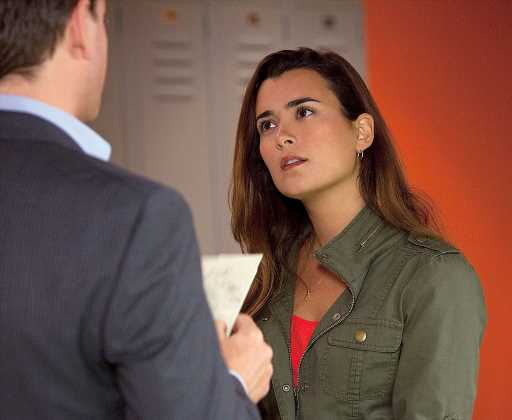 Will Cote de Pablo's Ziva Appear in 'NCIS' Spin-Off Shows?