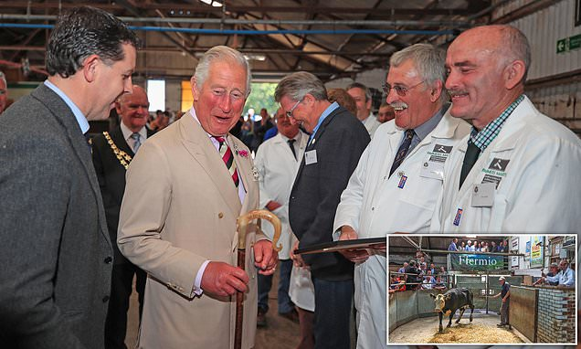 Prince Charles shares a joke with local farmers in Wales