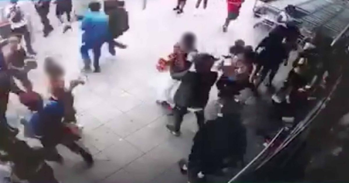'Zombie' mob goes on rampage in Aldi store destroying stock and attacking staff