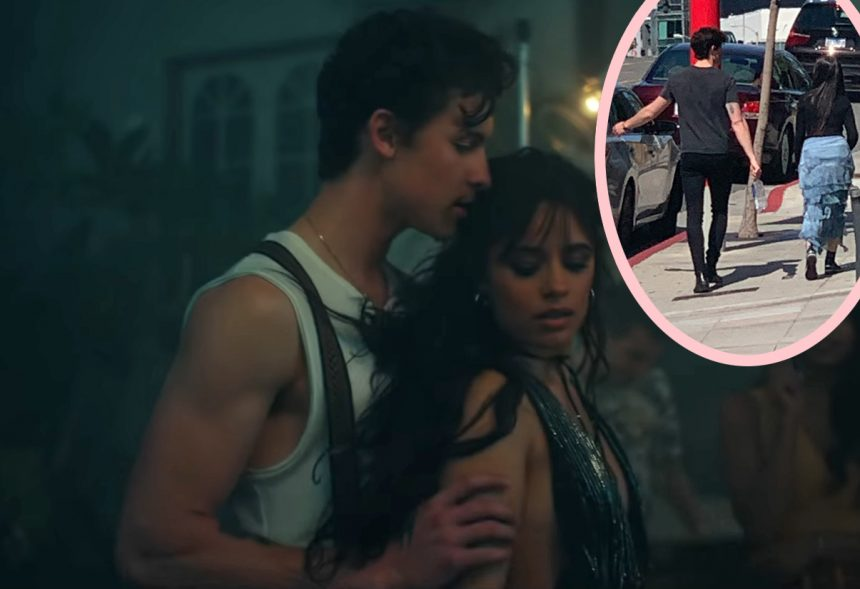 Why The Shawn Mendes & Camila Cabello Relationship Is 'Moving Quickly'