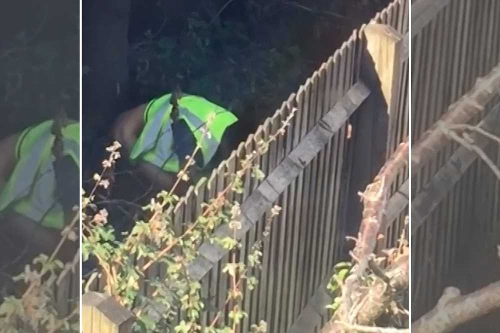 Amazon delivery driver caught pooping in customer's garden