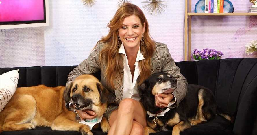 Why Kate Walsh Flies Her Dogs Business Class