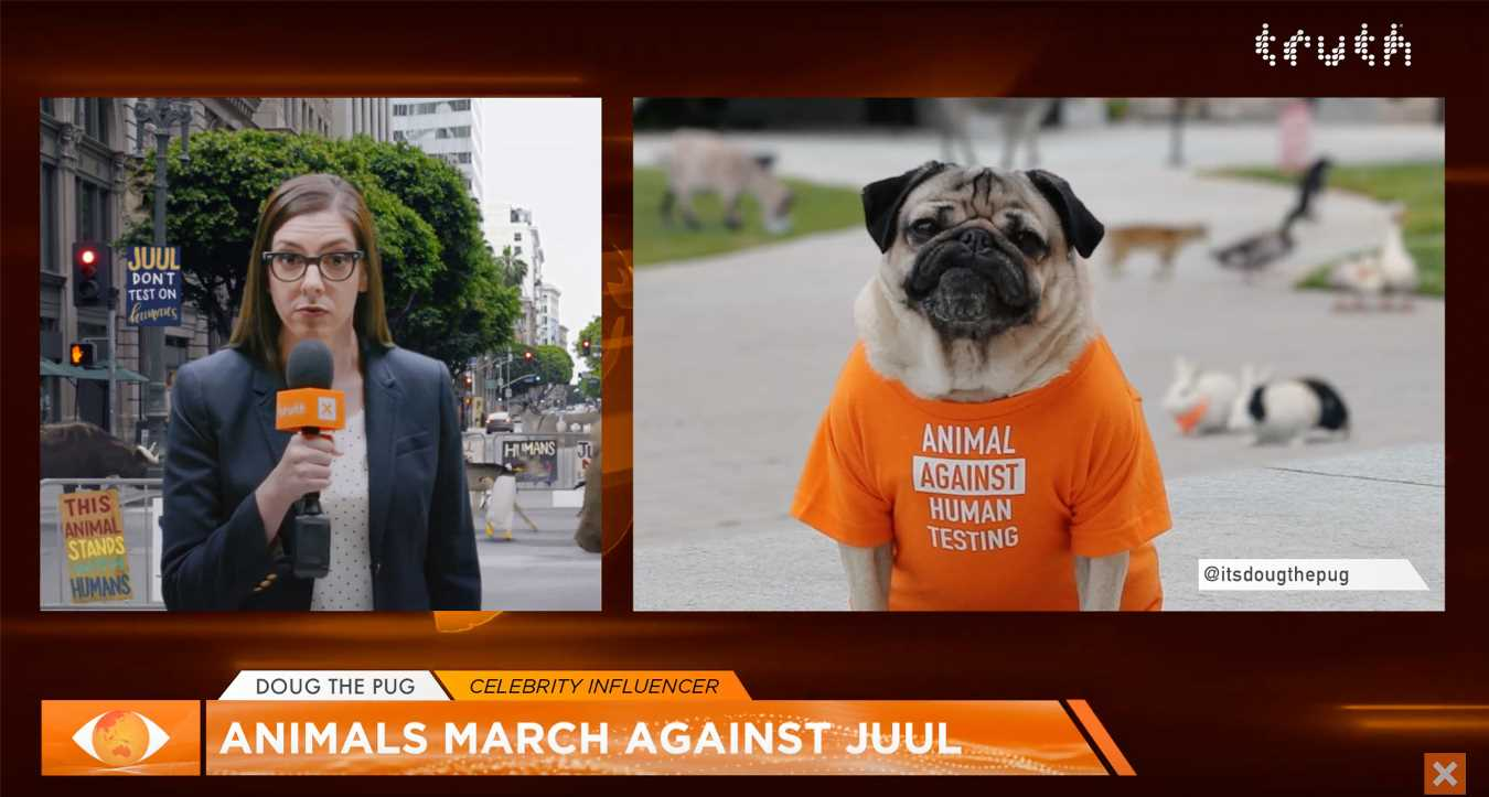 Doug the Pug Protests E-Cigarettes in Commercial to Air at MTV VMAs: 'Never Stop Fighting JUUL!'