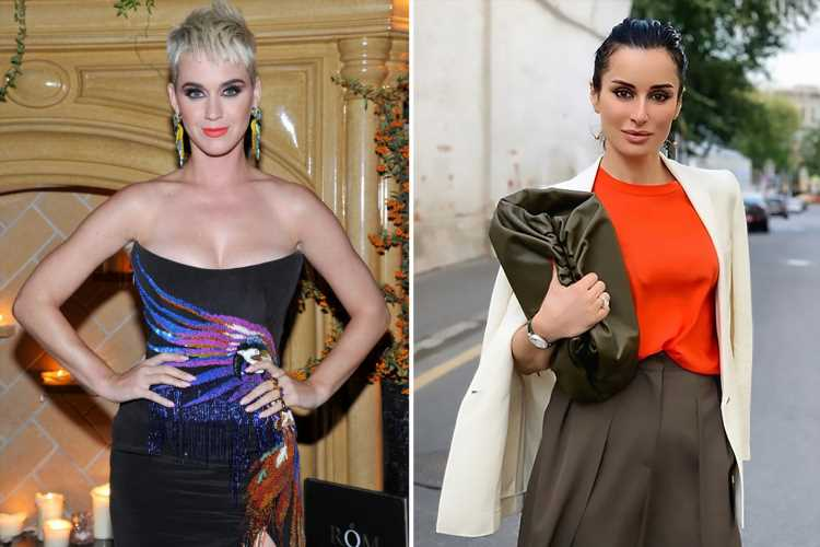 Katy Perry accused of trying to kiss a female TV host while intoxicated at an industry party – The Sun