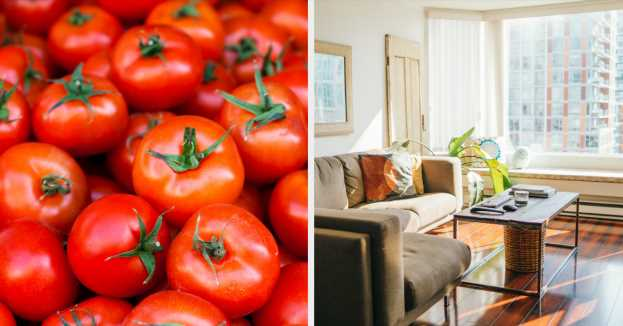 Eat Food In Every Color And We'll Reveal What Your House Actually Looks Like