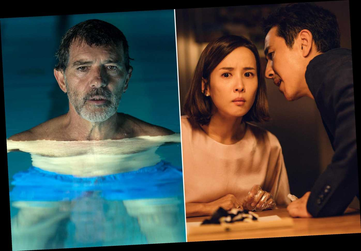 Oscars 2020: Each country's Best International Feature submission