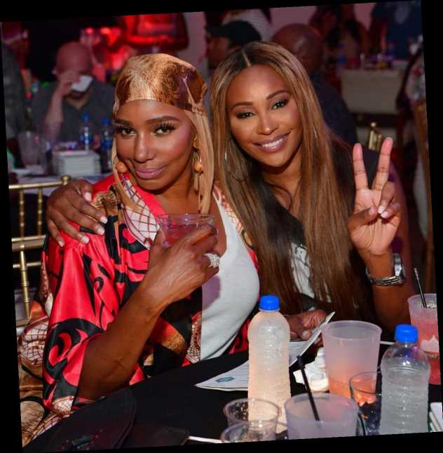 Cynthia Bailey & NeNe Leakes' Friendship Will Improve In 'RHOA' Season 12