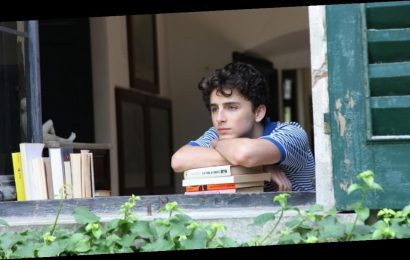 The Author of Call Me By Your Name Has Released a Sequel — Here's What Happens