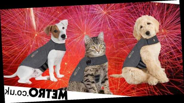 Pets at Home is selling jackets to keep dogs and cats calm during fireworks