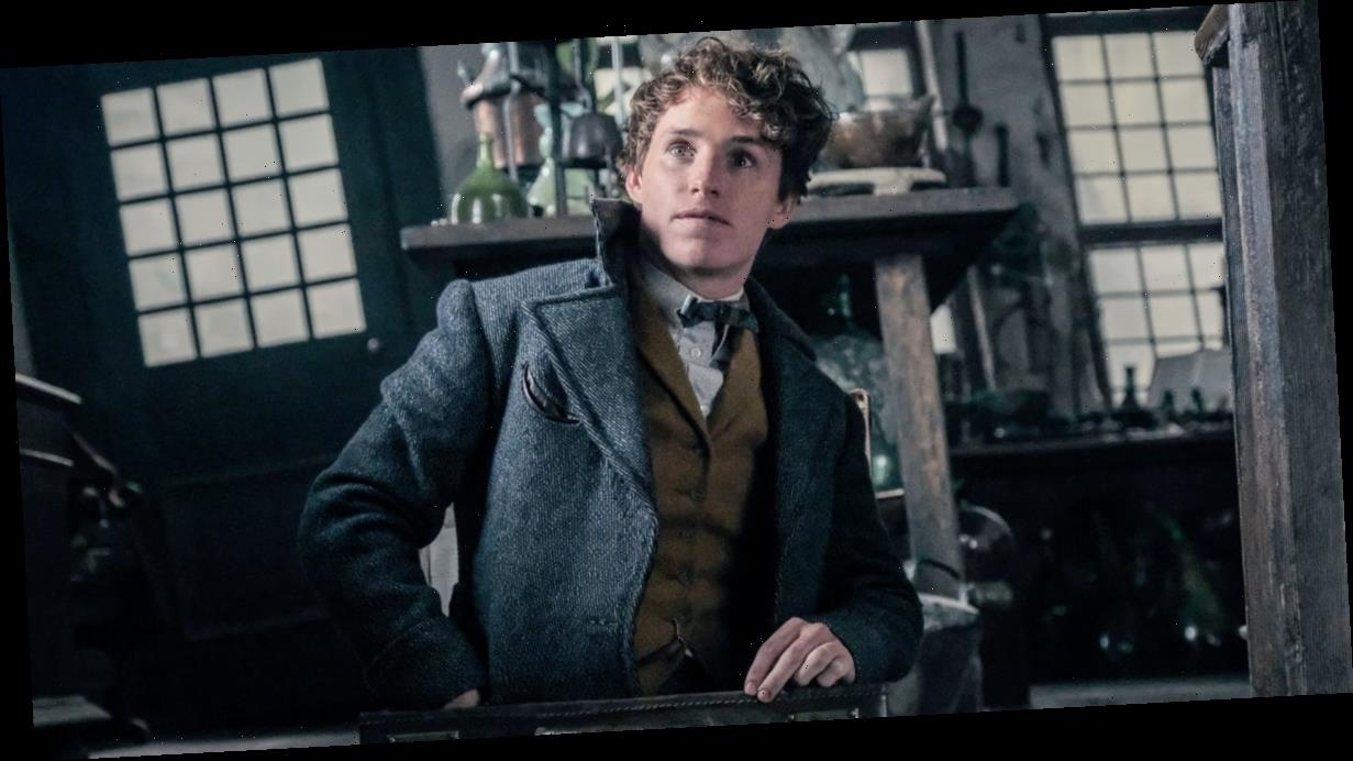 Fantastic Beasts Has Been Greenlit For a Third Film, and the Story Is Moving to Brazil