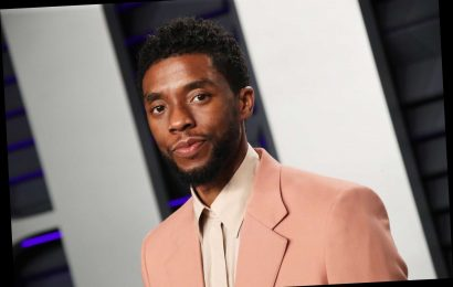 Chadwick Boseman Questions the Timing of Martin Scorsese's Marvel Criticism