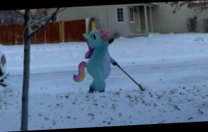 This mom dressed as a unicorn to shovel snow and it was magical