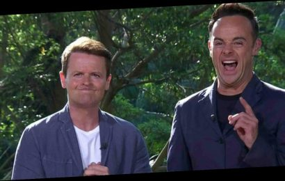 I'm A Celeb fans in hysterics as Dec is left disgruntled over prop blunder
