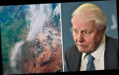 Why David Attenborough was shocked after 'nature's fiercest force'battered North America
