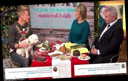 What NOT to feed your pets this Christmas