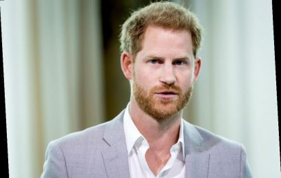 The Sweet Way Prince Harry Can Still Feel Connected to Princess Diana