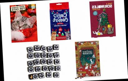 Best Advent Calendars For Cats 2019   The Sun UK