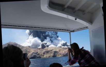 Tourist Who Narrowly Missed New Zealand Volcano Eruption Recalls Terrifying Moments After Incident