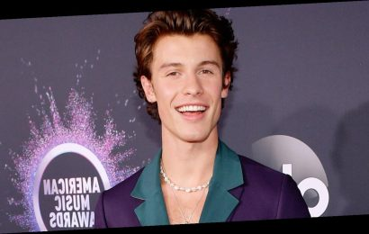 Shawn Mendes Has a Hilarious Response to Tripping During Concert in Brazil