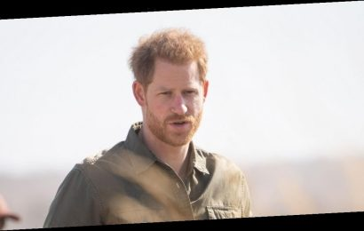 Prince Harry's 'biggest wish was to work as tour guide in Africa and be himself'