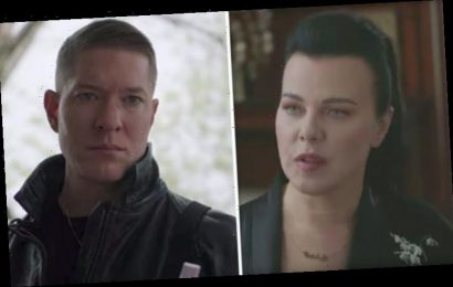 Power season 6 cast: Who plays Dolores? Here's where you've seen star before