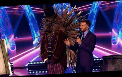 Masked Singer's Hedgehog 'accidentally unveiled' as identity is let slip on GMB