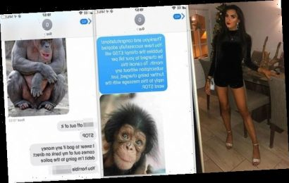 Woman tricks a man into thinking he's signed up to adopt a chimp
