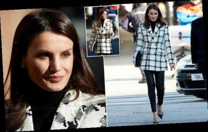 Queen Letizia wows in recycled houndstooth blazer and leather trousers