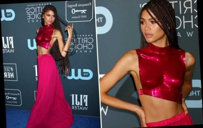 Critics' Choice Awards 2020: Zendaya slays in bright pink breastplate and wins best dressed – The Sun