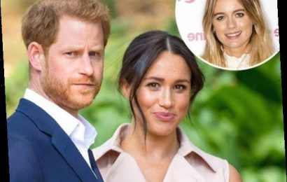 Prince Harry's Ex Won't Comment on Meghan Markle for This Reason