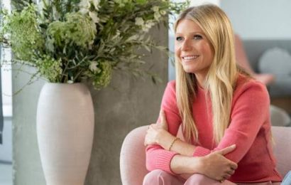 Hannah Betts: 'Gwyneth Paltrow – the more we laugh, the richer she gets'
