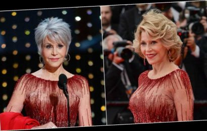Jane Fonda Hits 2020 Oscars In Recycled Gown After Swearing Off Clothing Purchases