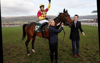 Cheltenham Festival 2020: Festival Plate preview, tv schedule, race time, tips, runners and riders and odds