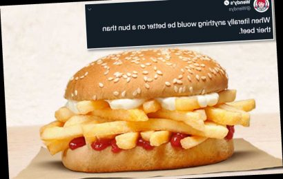 Wendy's and Burger King have 'beef' over new french fry burger