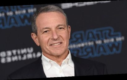Bob Iger Apologizes After Disney Fines School for Playing 'The Lion King'