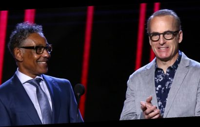 Bob Odenkirk & His 'Better Call Saul' Co-Star Giancarlo Esposito Present at Spirit Awards 2020