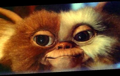 Gremlins Joe Dante Involvement Confirmed for HBO Max Series – /Film