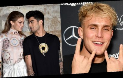 Jake Paul Says He Almost Fought Zayn Malik & Girlfriend Gigi Hadid Claps Back!