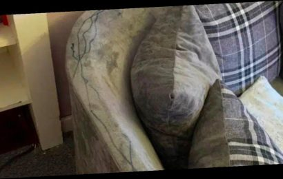 Mum uses £2.99 cleaning spray to get toddler's scribble marks out of sofa