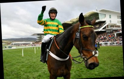 A new star born as Epatante routs them in the Champion Hurdle under cool as cucumber Barry Geraghty