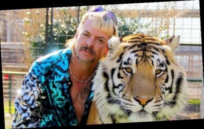 Tiger King movie: HUGE star wanted to play Joe Exotic from Netflix hit – Can you guess?