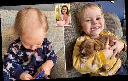 Two-year-old shaves a huge patch of her hair with dog clippers