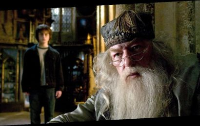 How Harry Potter and the Wizarding World Is Helping Me Get Through This Crisis