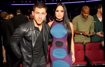 Demi Lovato and Nick Jonas Aren't Friends Anymore, But She's Staying Quiet About Why They No Longer Speak