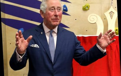 Prince Charles wants to put a herd of cattle & a manure field close to Anmer Hall