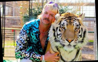 Fox & TMZ's 'Tiger King' Special Will Answer All Your Burning Questions