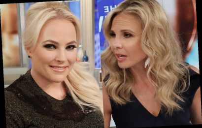 'The View' Fans React to Meghan McCain and Elisabeth Hasselbeck Feud