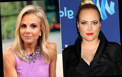 The View's Elisabeth Hasselbeck Claps Back at Meghan McCain's Criticism of Coronavirus Comments