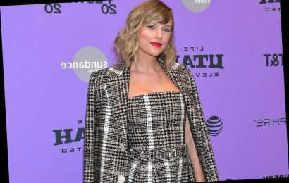 Taylor Swift Shares Cute Photo of Her Pet Cat Olivia Benson Relaxing 'Off Duty'