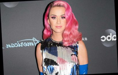 Katy Perry Mourns the Death of Her Cat Kitty Purry: 'Thanks for the Cuddles and Companionship'